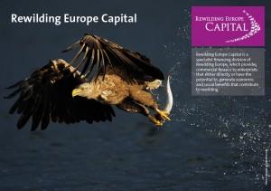 Rewilding Europe Capital fact sheet