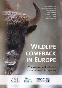 Wildlife Comeback Study cover