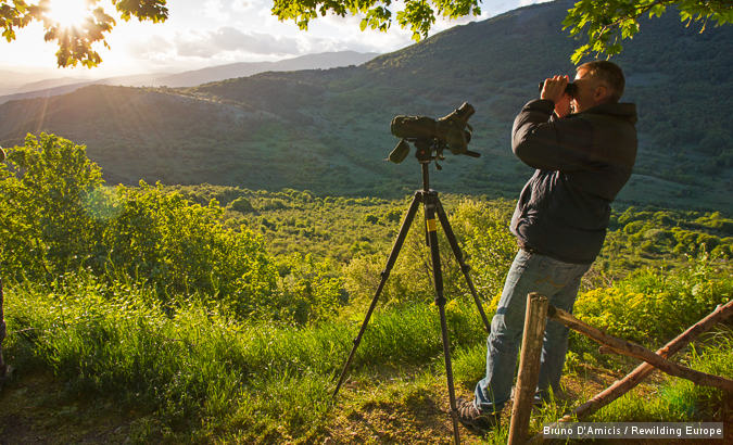 British tourist doing bear watching on a spring evening in Gioia Vecchio area in the Abruzzo National Park, Central Apennines. Abruzzo, Italy. May 2013.