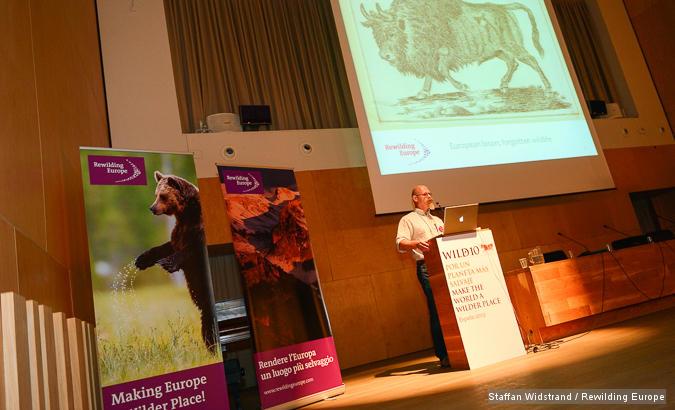 Joep de Vlasakker, speaker at the Rewilding Europe full day seminar at Wild10, The World Wilderness Congress, Salamanca, Spain