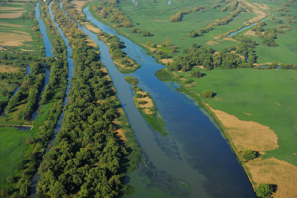 Проект значно прискорить відновлення природних ландшафтів дельти Дунаю, їх флори та фауни на площі понад 40 000 гектарів.