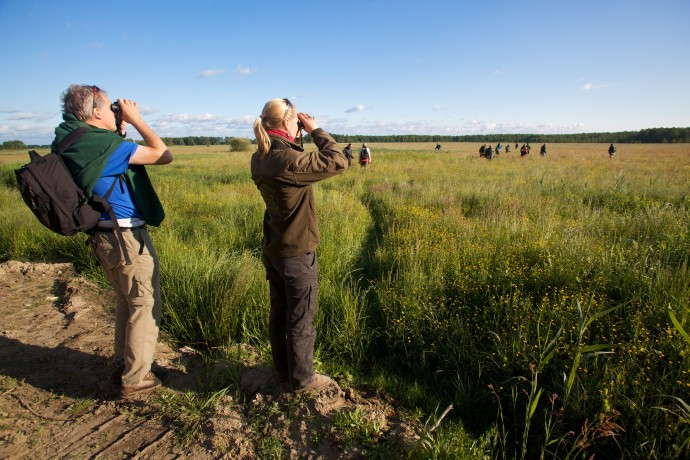 Frank Zanderink and Yvonne Kemp on the look out for red deer.