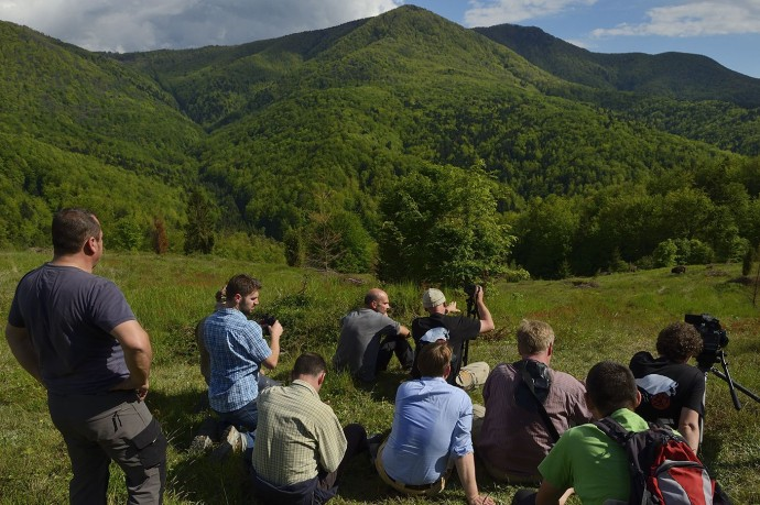 Bison watchers in the Tarcu mountains nature reserve, Natura 2000 area, Southern Carpathians, Romania. The release was actioned by Rewilding Europe and WWF Romania in May 2014.