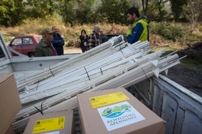 The sad story of a killed bear brought mobile electric fences to the Central Apennines.