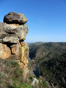 Côa Valley, Western Iberia rewilding area, Portugal.