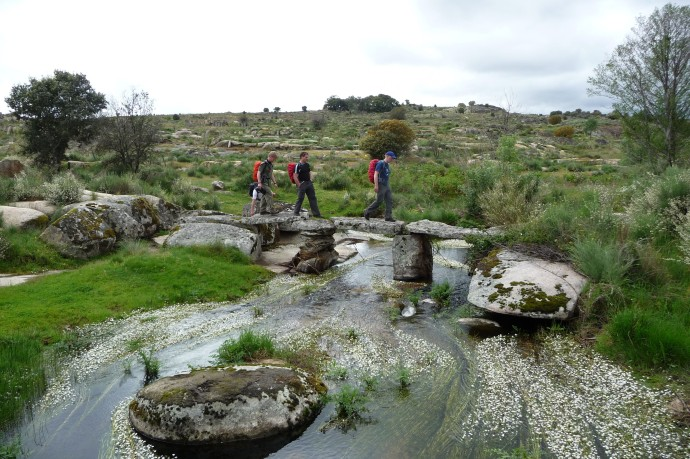 Discovering the Côa river.