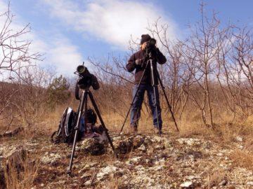 Volen Arkumarev, Conservation Officer, monitoring griffon vultures in the Bulgarian Rhodope Mountains.