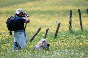 Photo workshop in Abruzzo, Central Apennines.