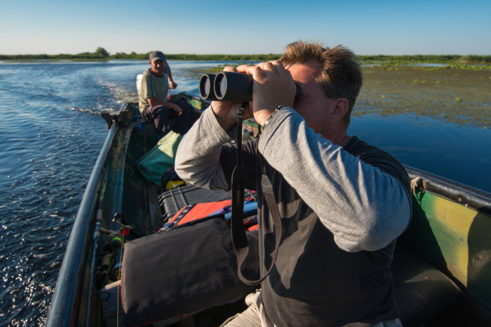 Bird watching in Danube Delta, Romania. The delta is a famous bird hotspot famous for richness in terms of species and numbers.