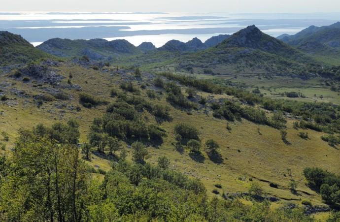 Paklenica National Park, Velebit Nature Park, Dalmatian coast, Adriatic sea, Croatia