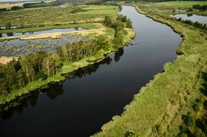 Large dams and large-scale river hydroengineering are massively damaging to aquatic habitat and lead to the overall loss of ecosystem services.