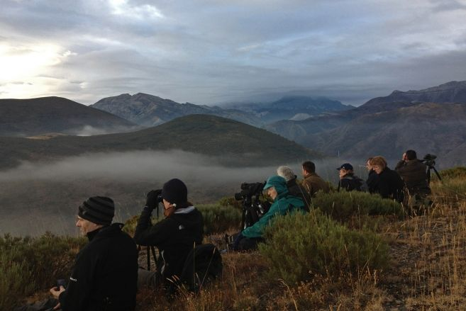 A group of observers watching for wolves in Riaño Mountains (Léon, Spain) at dawn