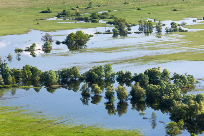 Allowing natural flooding of rivers is an important natural process.