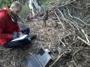 Latif Stoica, Danube Delta rewilding team volunteer