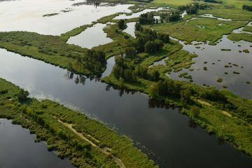 The Peene River and surrounding floodplains near Anklamer Stadtbruch in the Oder Delta rewilding area in Germany.