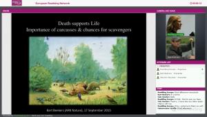 European Rewilding Network (ERN) Webinar about how to restore food chains.