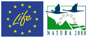 LIFE Bison and LIFE Vultures projects are funded by LIFE financial instrument of the European Community.