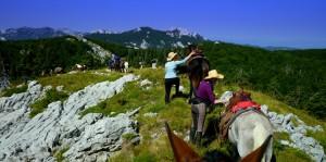 Horseback riding through Velebit rewilding landscape, offered by Linden Tree.
