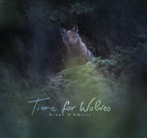 "Book cover of ""Time for Wolves"" by Bruno D'Amicis"