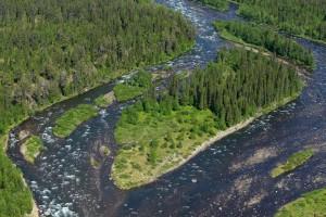 Peat bog lands and taiga boreal forest, Sjaunja Bird Protection Area, Lapland.