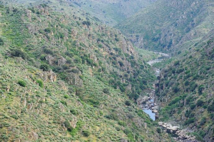 Côa Velley, Faia Brava reserve, Western Iberia rewilding landscape, Portugal.