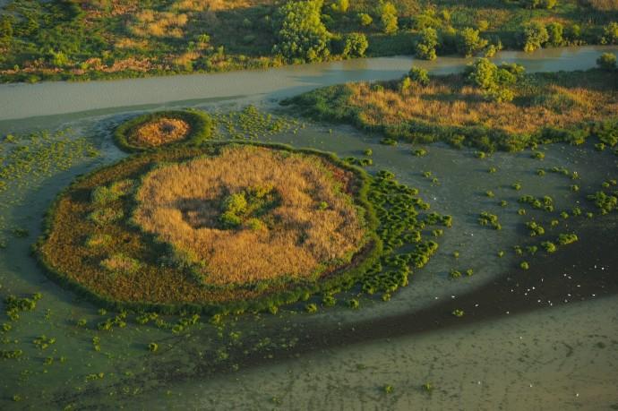 Aerials over the Danube delta rewilding landscape, Romania.