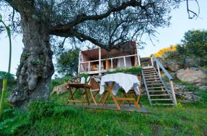 Star Camp in Faia Brava, Western Iberia, Portugal.