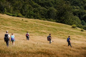 Nick Huisman and members of the Southern Carpathians rewilding team hiking and searching for bison in the Romanian Țarcu Mountains.