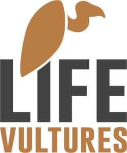 life-vultures-colour