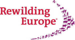 rewilding-europe-without-tagline-rgb-transparent