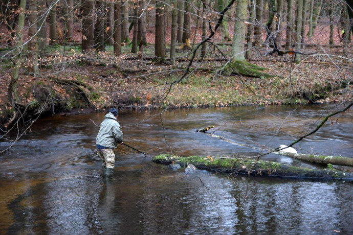 For over 20 years, Artur Furdyna, a fish ecologist and specialist on river and wetland restoration, has been safeguarding fish populations of the Ina and Gowienica rivers in Poland.