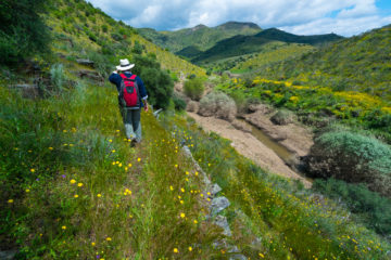 The award of a major grant to the Western Iberia rewilding area will enable scaled up rewilding in the Greater Côa Valley.