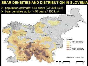 Map showing brown bear densities and distribution in Slovenia.
