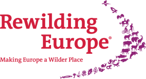 Rewilding-Europe-with-tagline-RGB-transparent