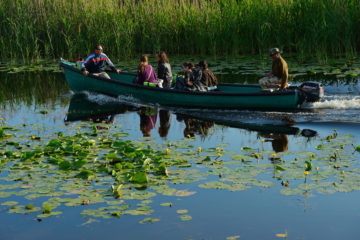 Rewilding Europe has been working to grow nature-based tourism in the Danube Delta, allowing residents to make a living based on the sustainable use of their wild resources.