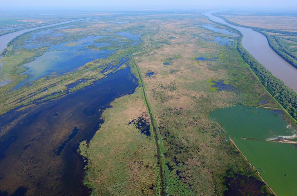 After reflooding, Ermakov island in Danube Delta rewilding area in Ukraine became a rich feeding, breeding and spawning ground for fish, flora and fauna. Further efforts will now focus on natural grazing and development of tourism on this magnificent island.