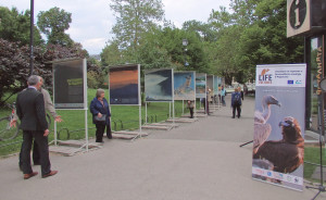 The photo exhibition, Installed in front of Sofia's National Theatre in Bulgaria, is open for visitors until June 2.