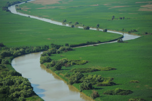 As a UNESCO Biosphere Reserve the Danube Delta enjoys strictly protected core areas. Despite its natural values, the long-term future of the delta is dependent on the large scale restoration of ecological processes.