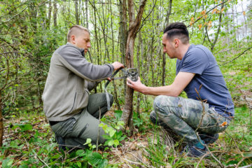 Bison rangers in the Southern Carpathians mount camera traps as part of the local wildlife monitoring programme.