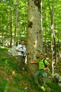Professor Joso Vukelić (left) and his colleague Stjepan Mikac (right) in Velebit rewilding area.