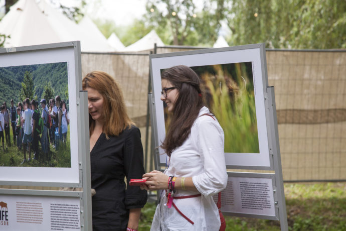 Photo exhibition of the Life Bison project at the Awake Festival in Romania.