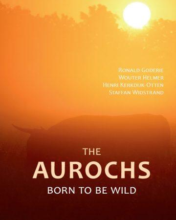 https://rewildingeurope.com/wp-content/uploads/2017/11/Aurochs-born-to-be-wild-640x800-360x450.jpg