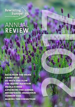 Rewilding Europe Annual Review 2017