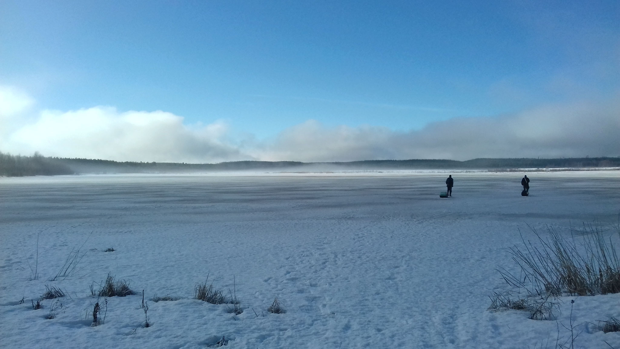 From January until July 2017, Marion Laventure and Antoine Scherer - two young researchers from the University of Lille in France - conducted an intensive investigation of both Linnunsuo wetland and the adjacent Jukajoki River in Finland.