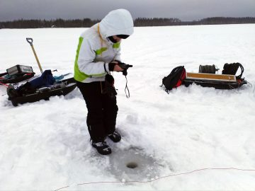 Physico-chemical analyses and macrozoobenthos monitoring of Linnunsuo revealed that the site is still highly polluted.