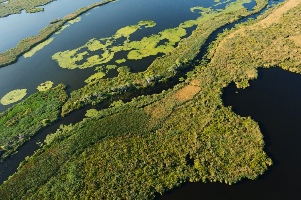 Danube Delta receives major grant to enable record-breaking restoration