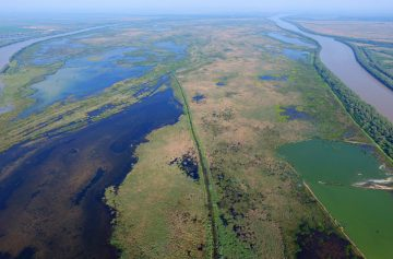 Aerial image of Ermakov island in the Danube Delta rewilding area in Ukraine.