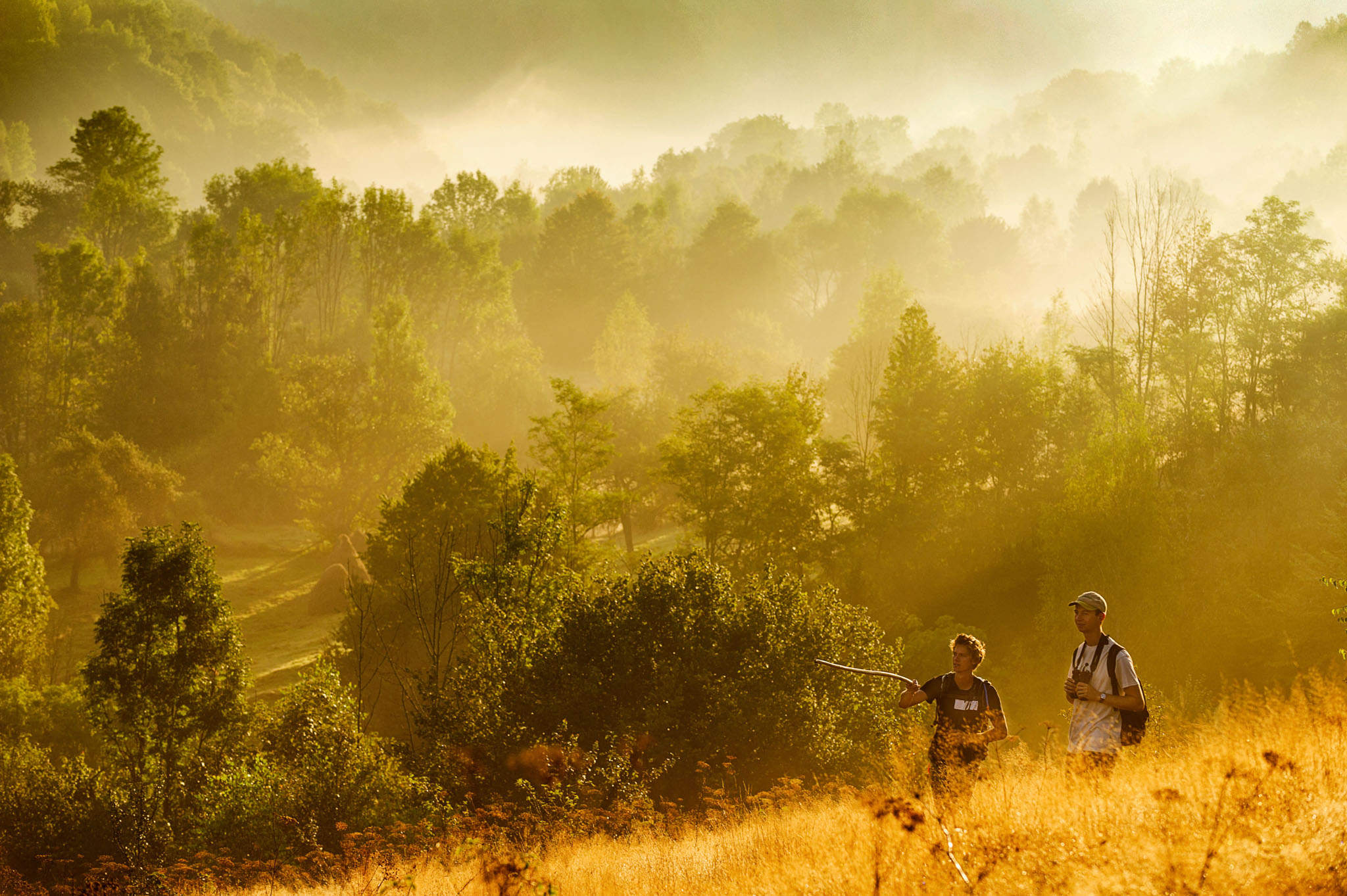 This autumn saw an extended Romanian rewilding team identify, describe and mark hiking and bicycle trails across the Bison Hillock, part of the Southern Carpathians rewilding area.