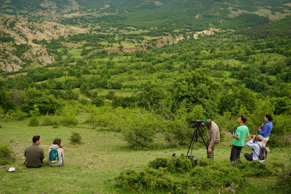 Participants of the Kartali Nature Camp enjoy the spectacular wild nature of the Rhodope Mountains rewilding area.