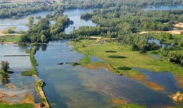 The Dutch Gelderse Poort area is now a role model for the restoration of other European rivers.